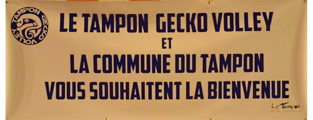 1_101 acceuil TGV TAMPON